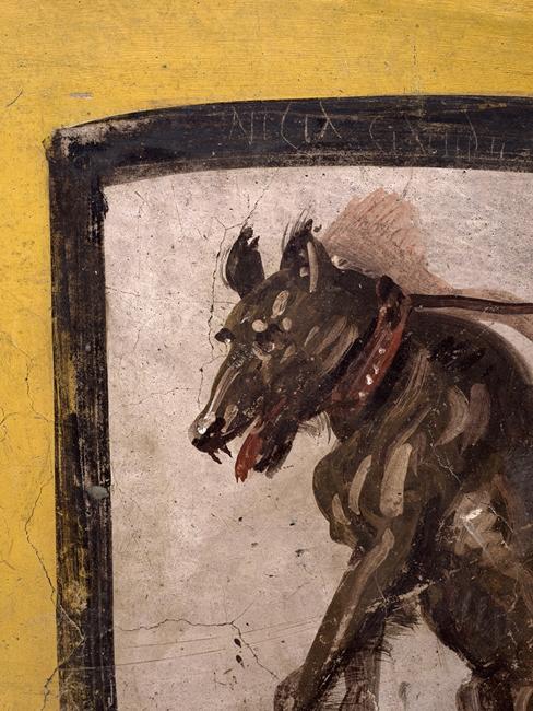 Part. del cane e dell'iscrizione sbeffeggiante - Ph. © Luigi Spina
