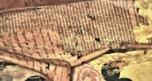 Un libro proibito e una setta di eretici: i misteri svelati di Palazzo Salituri a Castrovillari