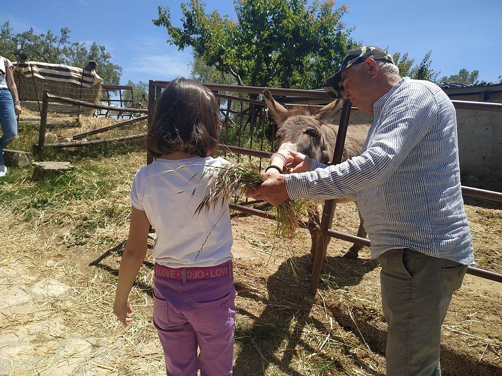 """I bambini incontrano gli animali alla Masseria didattica """"Fattoria Rovello"""", San Paolo di Civitate (Fg)"""