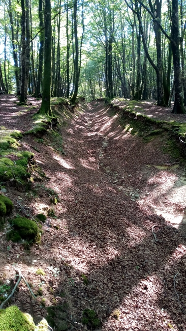 Tratto est del grande fossato attribuibile allo sbarramento romano - Ph. Lino Licari