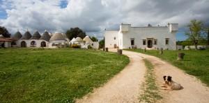 Masserie didattiche in Puglia: alla scoperta di un presidio del territorio e delle sue tradizioni