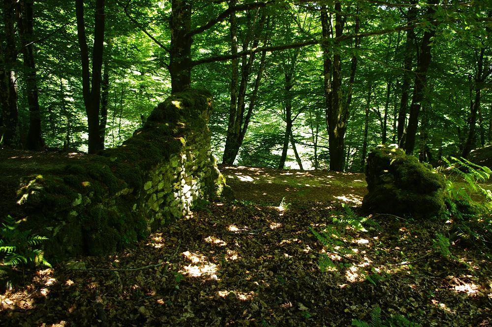 Resti di strutture di sbarramento sullo Zomaro, in località Bracatorta - Ph. Lino Licari