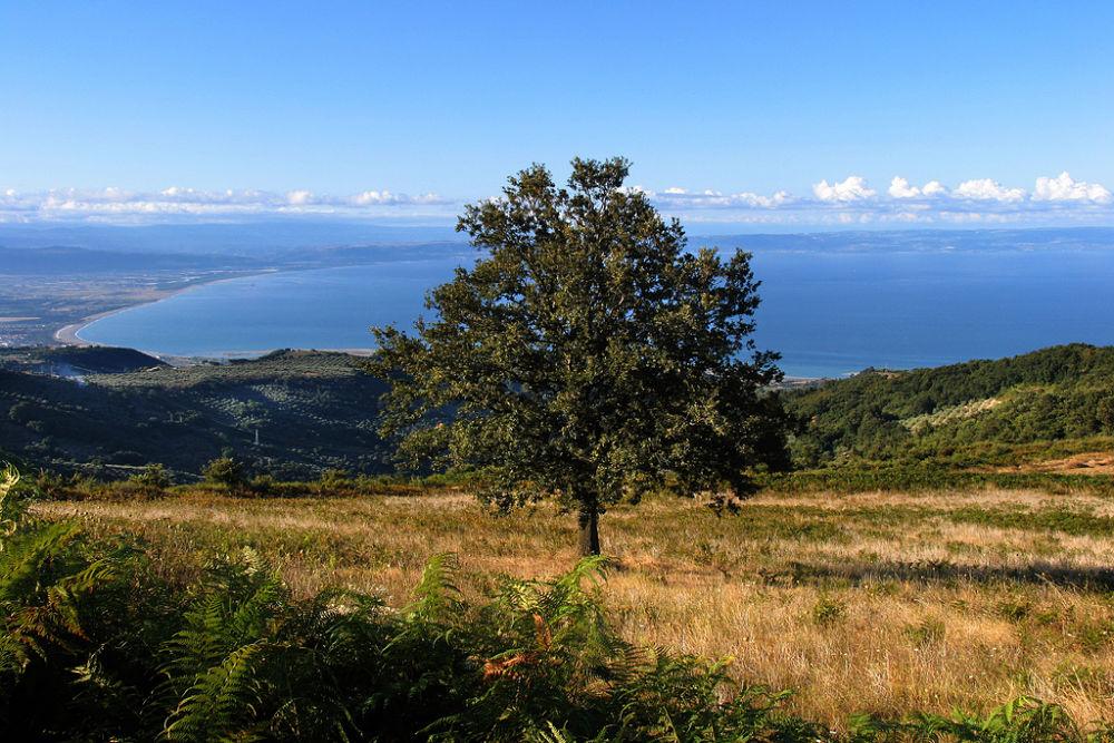 Il Golfo di Sant'Eufemia, in Calabria, visto dalle alture dell'entroterra - Ph. courtesy of Aurelio Candido