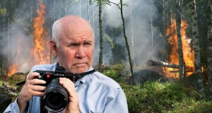 Steve McCurry per National Geographic sull'Aspromonte devastato dagli incendi