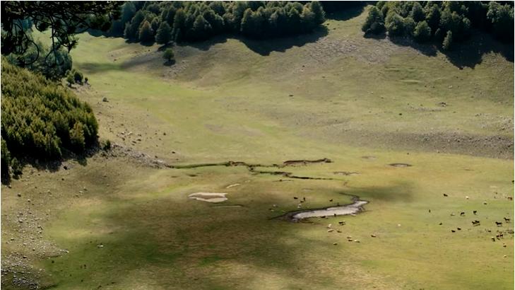 Pascoli d'altura nel Parco del Pollino in una scena del film