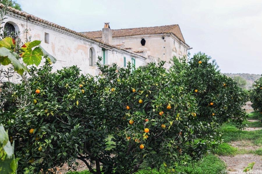 Calabria - La masseria 'Il Giardino di Iti' della baronessa Cherubini, in Contrada Amica, a Rossano (Cosenza)