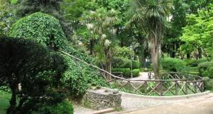 Inaugurato il Museo Civico di Storia Naturale a Cittanova nel reggino