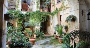 Racconta il tuo SUD | Calabria: San Giorgio Morgeto negli scatti di Angelo Il Grande