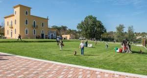 Il cuoco pugliese Peppe Zullo premiato dall'Unesco a Foligno