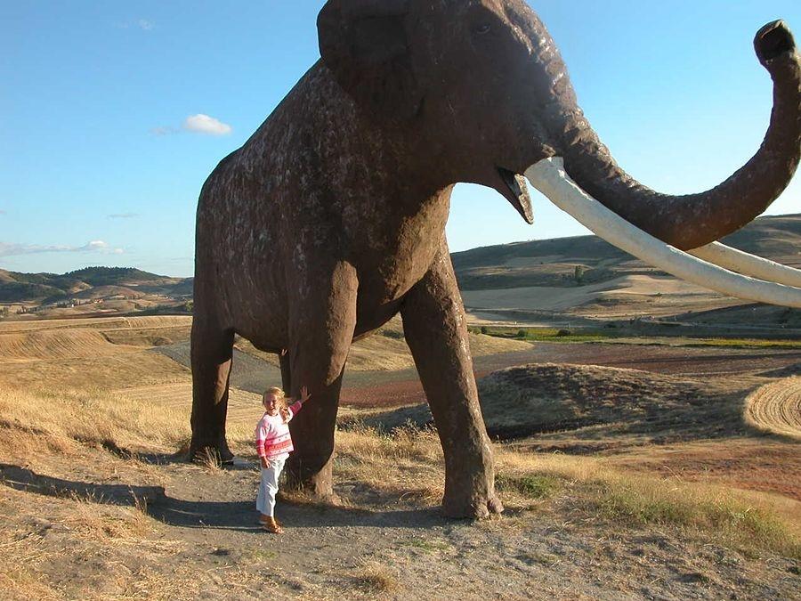 Ricostruzione di un esemplare di Elephas Antiquus - Ph. Friera | Public domain