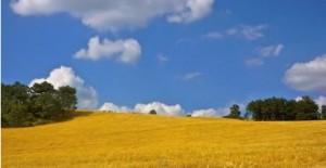Ascoltando il silenzio. La Lucania folgorante e autentica di Sandro Sansone