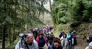 Gli amanti della natura hanno celebrato la bellezza del Bosco Archiforo con un grande e festoso raduno