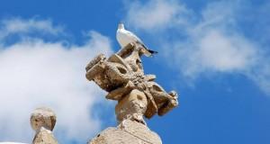 Salento: viaggio sentimentale nel Tacco d'Italia