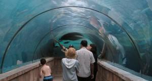 Un tunnel subacqueo per visitare il porto romano sommerso di Lipari: è il progetto della siciliana Soprintendenza del Mare