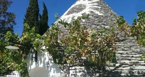 Vini per il buon bere 2015: guida ai top della Puglia