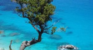 Il Mediterraneo splendente di Cala Goloritze', nello scatto segnalato dalla lettrice sarda Floriana Pintus