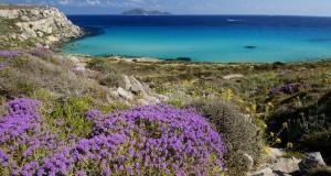 Pubblicata la Top Ten di Skyscanner delle spiagge più belle d'Italia: 8 si trovano nel Mezzogiorno