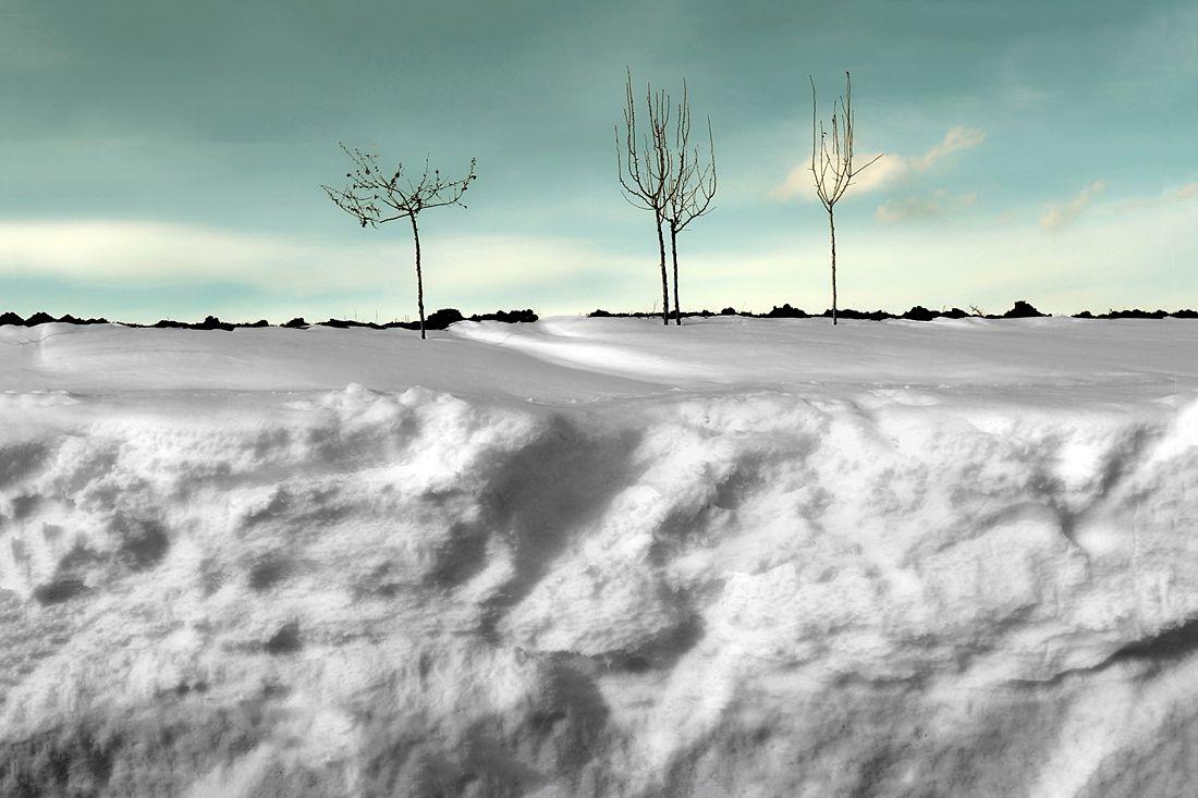 Basilicata - Neve nella campagna di Ferrandina (Matera) - Ph. Francesco La Centra