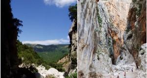Gola di Gorropu: in Sardegna uno dei canyon più spettacolari d'Europa. Le sue rarità botaniche e faunistiche