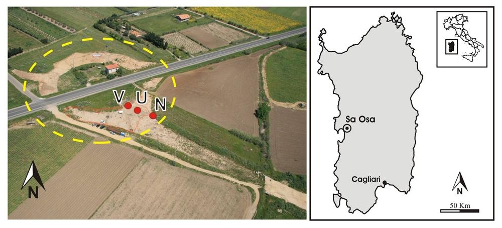 Il luogo della scoperta del vitigno, Sardegna