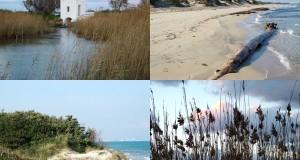 Itinerari a Sud | Due percorsi, a piedi e in bicicletta, alla scoperta del Parco Naturale Regionale delle Dune Costiere di Ostuni