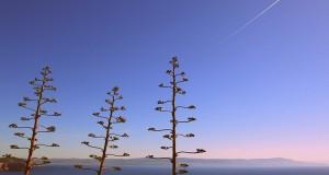 Dare senso al Paesaggio. A Cagliari la IIIa edizione delle Giornate Internazionali di Studio sul Paesaggio