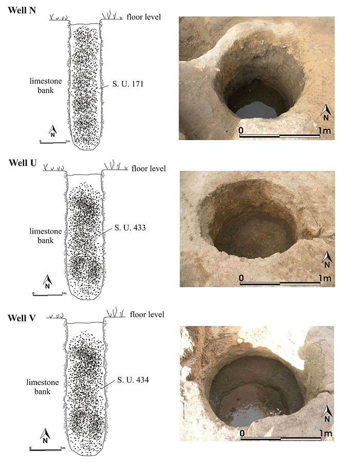 I pozzetti nuragici nei quali sono stati ritrovati gli antichi semi di vite - Ph. CCB