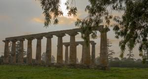 La dimora di pietra della dea. Il tempio di Hera a Metaponto