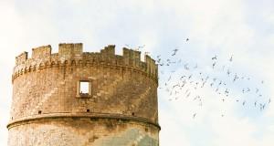 La casa rinascimentale delle colombe, nello scatto di Ferruccio Cornicello