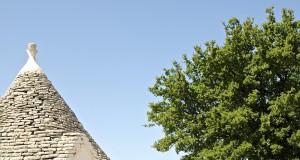 Abitare la Storia | Trullo Meridiano: appartato angolo di autenticità in Puglia, fra uliveti, vigneti e fichi d'India