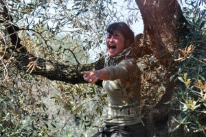 I proprietari degli uliveti disperati di fronte al taglio dei loro alberi - Ph. Valerio Saracino - FdS: courtesy dell'Autore
