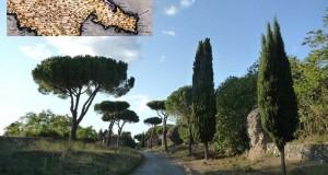 2050 anni fa il viaggio da Roma a Brindisi del poeta lucano Orazio Flacco. Ecco il racconto…